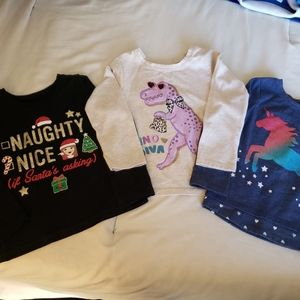 Girl Bundle of 3 long sleeved shirts 2T